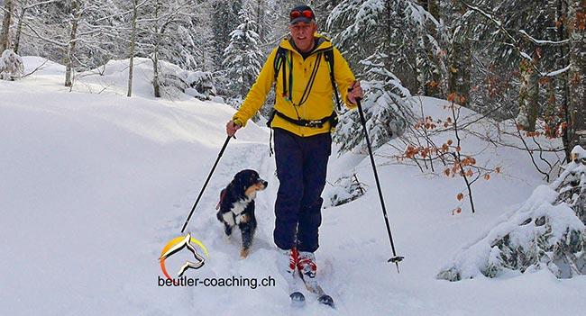 Workshop Schneetouren mit meinem Hund